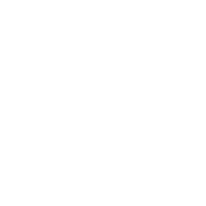 Weißer Schriftzug Logo FAIA place mit Feuerflamme links